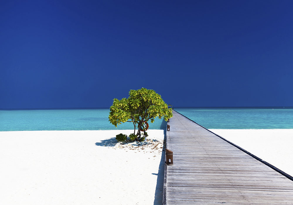 Мальдивы лучший сезон для отдыха по месяцам