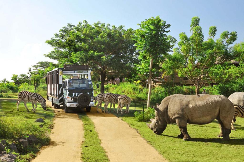 bali-safari-marine-park.jpg